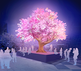 The Tree of Light -灯桜-