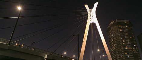 東京湾方面コース画像1